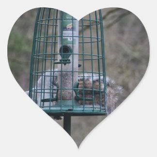 Squirrel on bird feeder heart sticker