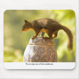 Squirrel on Cookie Jar Mousepads