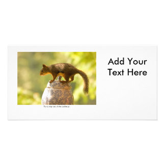 Squirrel on Cookie Jar Photo Card Template
