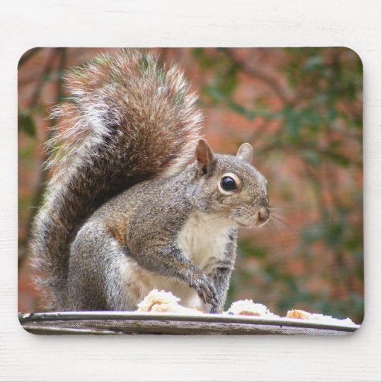 Squirrel on Feeder Mouse Pad