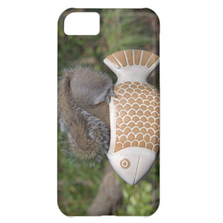 Squirrel on Fish iPhone 5C Cover