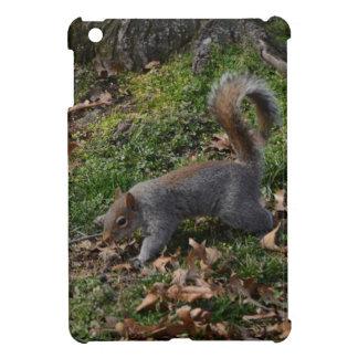 Squirrel On Forest Floor iPad Mini Cases