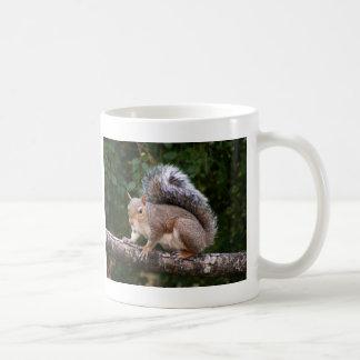 Squirrel On Limb Mug