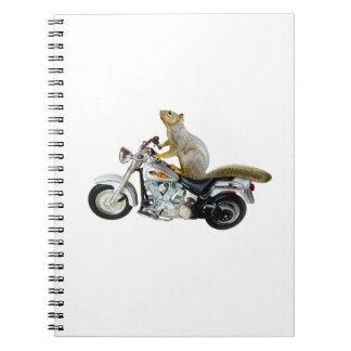Squirrel on Motorcycle Journal
