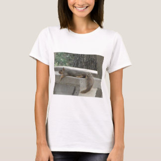 Squirrel on picnic table T-Shirt