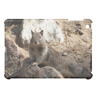 Squirrel On Rocks Case For The iPad Mini