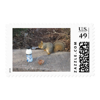 Squirrel on The Loose Postage