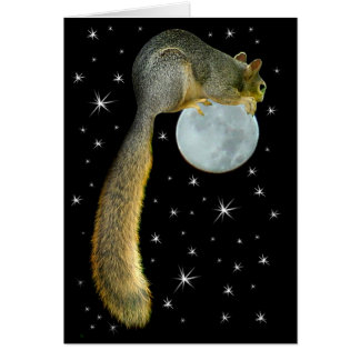 Squirrel on the Moon Card