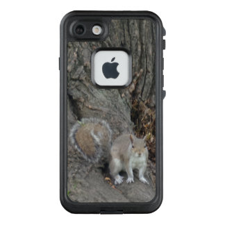 Squirrel on Tree FRĒ® for Apple iPhone 7