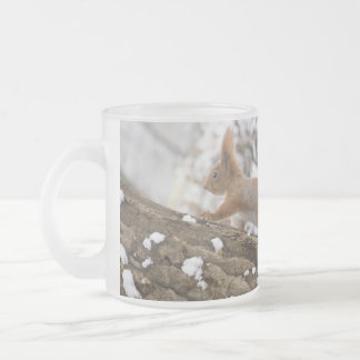 Squirrel On Tree Frosted Glass Coffee Mug