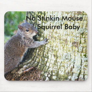 Squirrel on Tree, No Stinkin Mouse....Squirrel ... Mouse Pad