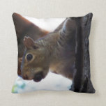 Squirrel on Tree with Nut in Mouth, Closeup Pillows
