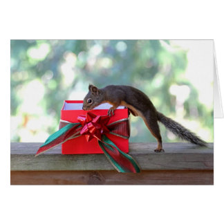 Squirrel Opening Christmas Present Card