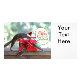 Squirrel Opening Christmas Present Photo Greeting Card