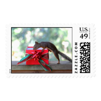 Squirrel Opening Christmas Present Stamp