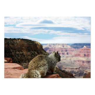 Squirrel Overlooking Grand Canyon, Arizona Business Card Template