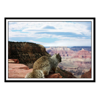 Squirrel Overlooking Grand Canyon, Arizona Business Card Templates