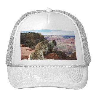 Squirrel Overlooking Grand Canyon Arizona Trucker Hat