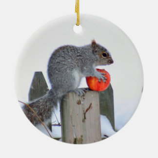 Squirrel photo ceramic ornament