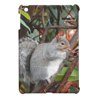 Squirrel Photo Gift Cover For The iPad Mini