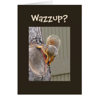 Squirrel Photograph Card