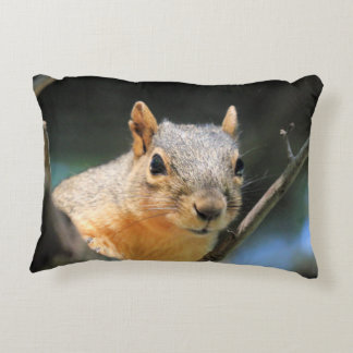 Squirrel Pillow
