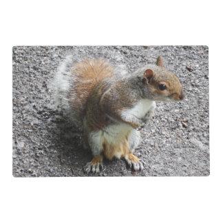 Squirrel Placemat by Deb Vincent