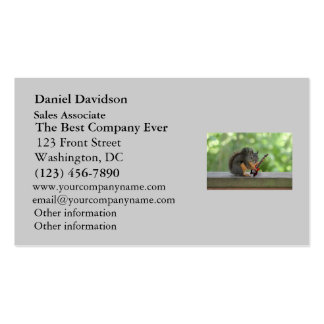 Squirrel Playing Electric Guitar Double-Sided Standard Business Cards (Pack Of 100)