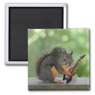 Squirrel Playing Electric Guitar Refrigerator Magnets