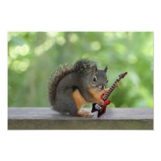 Squirrel Playing Electric Guitar Photo Print
