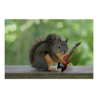 Squirrel Playing Electric Guitar Poster