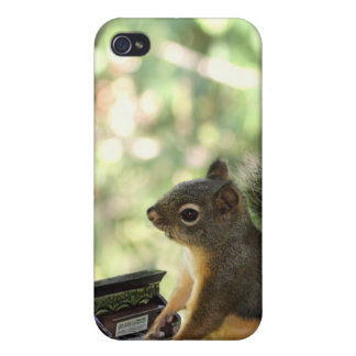 Squirrel Playing Piano iPhone 4 Cover