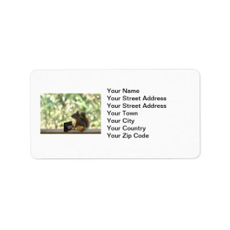 Squirrel Playing Piano Address Label