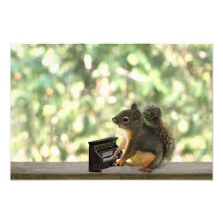 Squirrel Playing Piano Photo Print