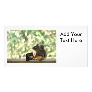 Squirrel Playing Piano Customized Photo Card