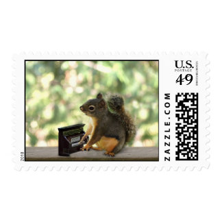 Squirrel Playing Piano Stamp
