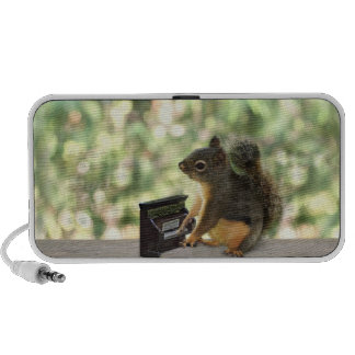 Squirrel Playing Piano Mp3 Speaker