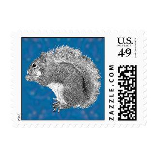 Squirrel Plus Stamp