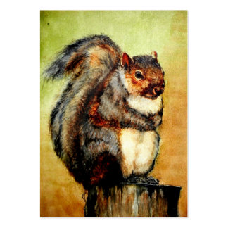 Squirrel Portrait ACEO Art Trading Cards Large Business Card