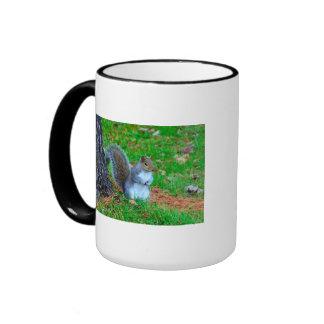 Squirrel Poses Ringer Mug