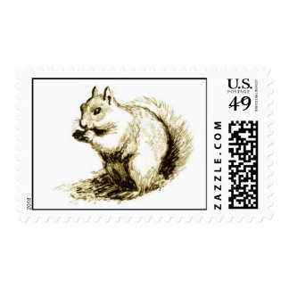 Squirrel Stamps