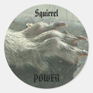 Squirrel power sticker