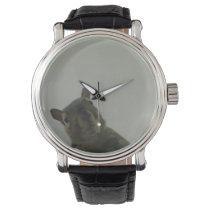 Squirrel Power Wristwatch
