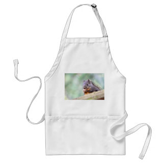 Squirrel Praying for Peanuts Adult Apron
