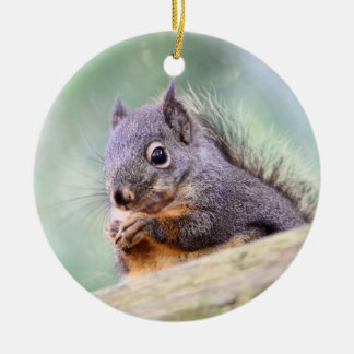 Squirrel Praying for Peanuts Ceramic Ornament