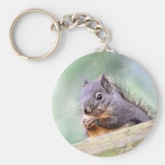 Squirrel Praying for Peanuts Key Chain