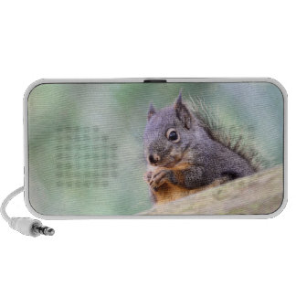 Squirrel Praying for Peanuts Portable Speakers