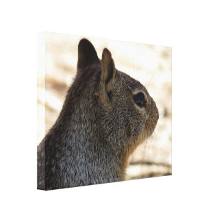 Squirrel Profile Gallery Wrapped Canvas