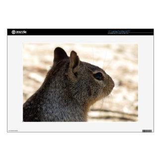 """Squirrel Profile 15"""" Laptop Decals"""