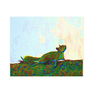 squirrel psychadelic photo canvas print